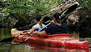 Spływy kajakowe po jeziorach lub po rzekach Lubuskich Mazur